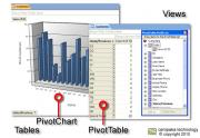 PivotChart, PivotTable, Table Design, Views